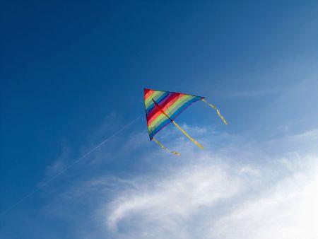 Natural Flying Kite