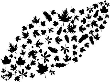 Illustration pour Flying autumn leaves black on white background. Vector illustration - image libre de droit
