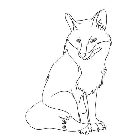 Illustration for fox sitting vector illustration - Royalty Free Image