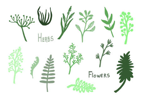 Illustration pour vintage set of hand drawn tree branches with leaves and flowers - image libre de droit