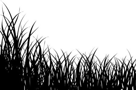 Vector illustration grass background for design usage