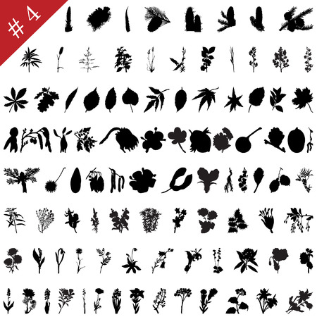 Vector collection of different plants and flowers silhouettes #4