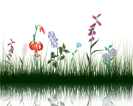 Illustration for Vector grass silhouettes background with reflection in water. All objects are separated. - Royalty Free Image