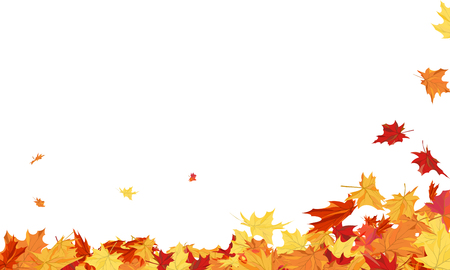 Autumn  Frame With Blowing Maple Leaves  Over White Background.のイラスト素材