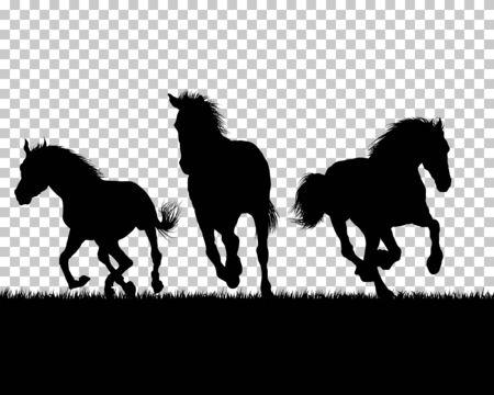 Illustration pour Horse silhouette on Grass With Transparency Grid Background. Vector Illustration. - image libre de droit