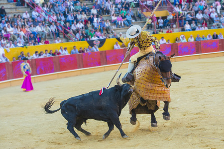 Details of animal abuse to the bull in Spanish bullfights