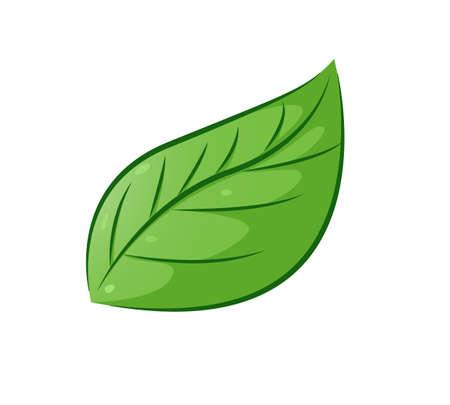 Illustration pour Aesthetic leaf - image libre de droit