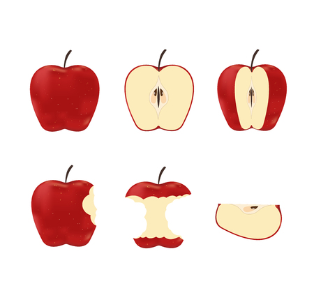 Illustration pour Vector illustration of set red ripe apples isolated on white background - image libre de droit