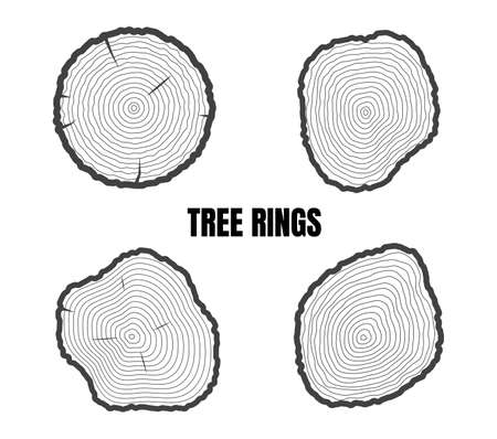 Illustration pour Collection of tree rings isolated on white background - Vector illustration - image libre de droit
