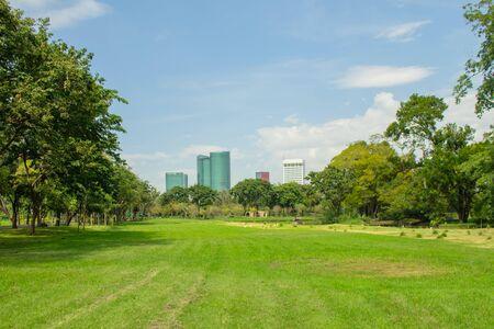 Foto de Tropical view of green lawn grass meadow field and trees in public park with city buildings in the background. (Selective focus) - Imagen libre de derechos