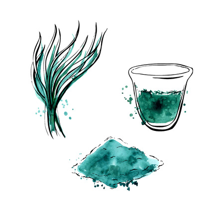 Illustration pour Vector illustration of super food Spirulina. Organic healthy dietary supplement. Hand drawn isolated objects on white background. Black outlines and bright watercolor stains and drips. - image libre de droit