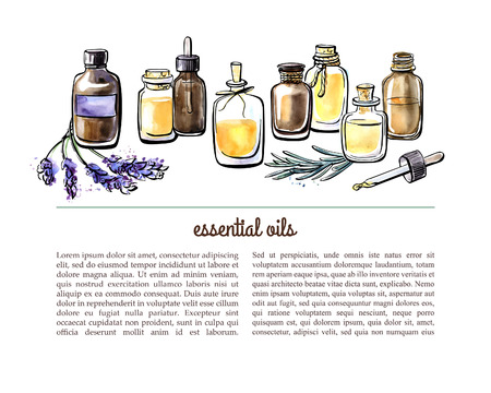 Ilustración de Vector illustration with essential oil bottles, aromatic plants and flowers. Hand drawn watercolor objects on white background with place for text. Aromatherapy card, flier or leaflet design. - Imagen libre de derechos