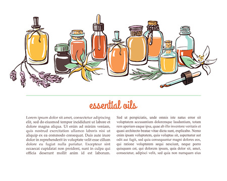 Illustration pour Vector illustration with essential oil bottles, aromatic plants and flowers. Bright colorful doodle objects on white background with place for text. Aromatherapy card, flier or leaflet design. - image libre de droit