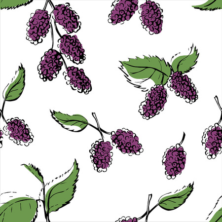 Illustration pour Vector seamless pattern with hand drawn mulberries. Doodle branch of violet berries with green leaves with black outline on white background. Repeating backdrop for your design. - image libre de droit
