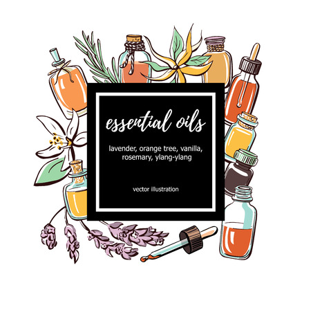 Illustration pour Vector illustration Essential oils. Hand drawn doodle bottles, aromatic plants and flowers and black square frame with place for your text. Aromatherapy card, poster, flyer design. - image libre de droit