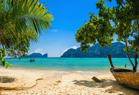 Photo for Exotic beach with palms and boats on azure water, Phi Phi Island, Phuket area, Thailand - Royalty Free Image