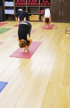 Some girls are engaged in yoga