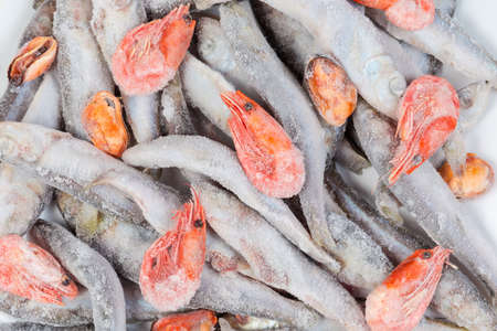 Foto de Background of frozen and covered with icy glaze and hoarfrost baltic herring, shrimps and mussels peeled from shells close-up - Imagen libre de derechos
