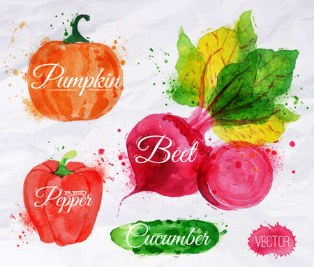Vegetables set drawn watercolor blots and stains with a spray pumpkin, beet, pepper, cucumberのイラスト素材
