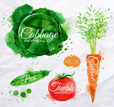 Vegetables set drawn watercolor blots and stains with a spray cabbage, carrot, tomato, peasのイラスト素材