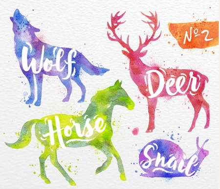 Photo pour Silhouettes of animal deer, horse, snail, wolf drawing color paint on background of  watercolor paper - image libre de droit
