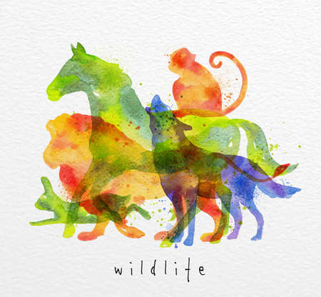Color animals ,horse, wolf, monkey, lion, rabbit, drawing overprint on watercolor paper background lettering wildlife
