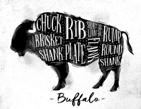 Poster buffalo cutting scheme lettering chuck, brisket, shank, rib, plate, flank, sirloin, shortloin, rump, round, shank in vintage style drawing on dirty paper background
