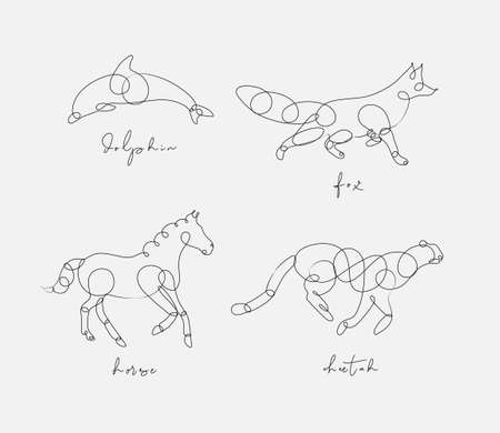 Set of animals dolphin, fox, horse, cheetah drawing in pen line style on light background