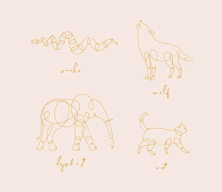 Set of animals snake, wolf, elephant, cat drawing in pen line style on beige background
