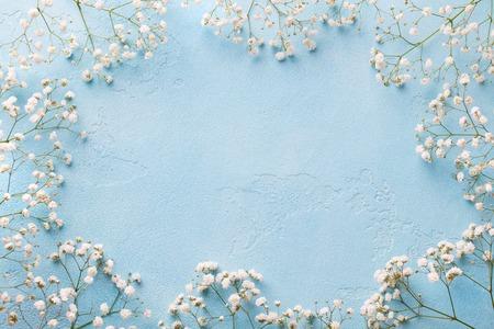 Photo pour Frame of white flowers, gypsophila. - image libre de droit