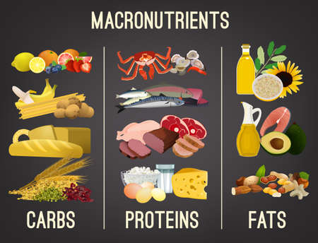 Ilustración de Main food groups - macronutrients. Carbohydrates, fats and proteins in comparison. Dieting, healthcare and eutrophy concept. Vector illustration isolated on a dark grey background. Landscape poster. - Imagen libre de derechos