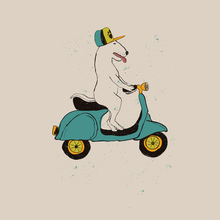 Illustration for Illustration with cute Bull Terrier Dog riding motorbike. Funny greeting card, t-shirt design, print, sticker or poster. - Royalty Free Image