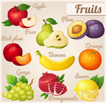 Fruits. Red apple, pear, violet plum, red plum, banana, orange, grape, pomegranate, lemon