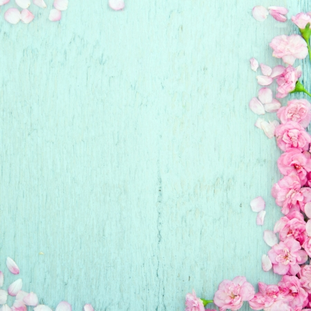 Blue wooden background with pink spring blossom flowers and copy space