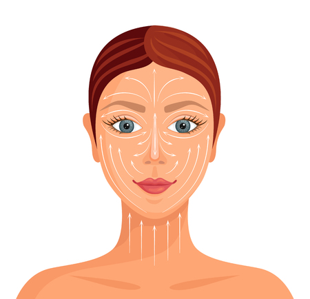 Illustration pour Face of woman with massage lines. Scheme of applying a face cream. Care of the skin. - image libre de droit