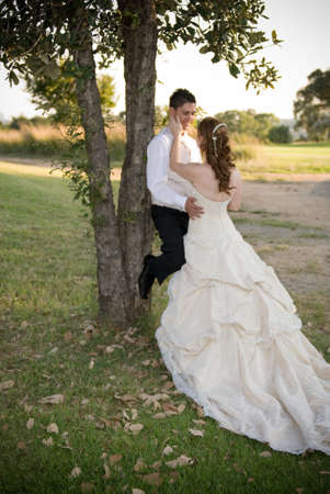 just married couple standing and kissing against a tree in the shade on a sunny day