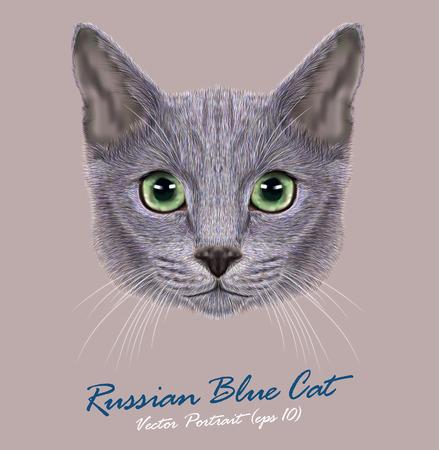 Ilustración de Vector Portrait of Domestic Cat. Russian Blue Cat. Cute young cat with green eyes - Imagen libre de derechos
