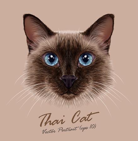 Ilustración de Vector Illustrative Portrait of a Thai Cat. Cute seal point Traditional Siamese Cat. - Imagen libre de derechos