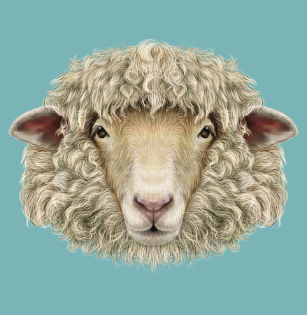 Illustrated Portrait of  Ram or sheep on blue background