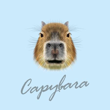 Illustration pour Illustrated Portrait of Capybara. Cute face of wild Capybara on blue background. - image libre de droit