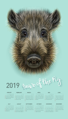 Illustration for Pig calendar for 2019. Vector editable template with concept. Symbol of the year in the Chinese calendar. Realistic vector illustration of wild boar. - Royalty Free Image