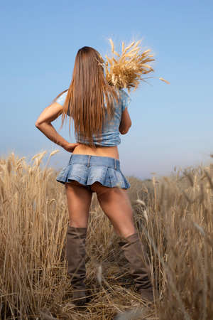Photo pour Sexy peasant woman in mini skirt holding spikelets of wheat on a field - image libre de droit