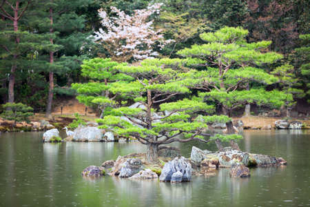 One of 10 smaller islands of the Mirror Pond (Kyoko-chi lake) is in a magnificent Japanese strolling garden. Golden Pavilion, Kyoto, Japan. Rainy dayの写真素材