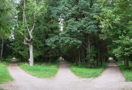 Photo pour Three forest roads converge into one or diverge point of three ways. Gatchina town, Russia - image libre de droit