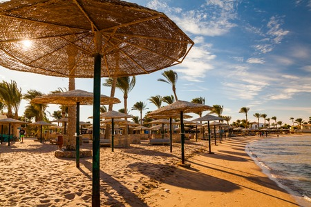 Picturesque views of the tropical beach with palm trees, parasols and sunbeds