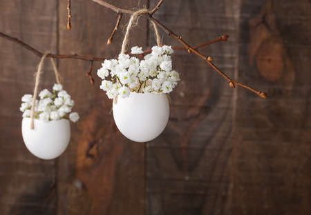 Bunch of of white gypsophila flowers in eggs shell on the brown wooden plank. Shallow depth of field, focus on near flowers. Easter decor