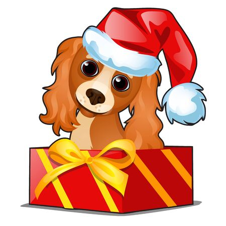 Illustration for Christmas gift box with a cute dog in cap of Santa Claus isolated on white - Royalty Free Image