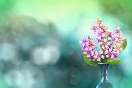 Beautiful live malva or mallow bouquet bouquet in ceramic vase on sunny day with empty space for your content on natural leaves and sky blurred bokeh background.