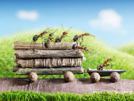 Photo pour team of ants carries logs with trail car, teamwork, ecofriendly transportation - image libre de droit