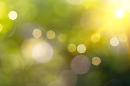 Foto de Green nature sunlight colorful bokeh abstract background .Vintage pastel color tone style. - Imagen libre de derechos
